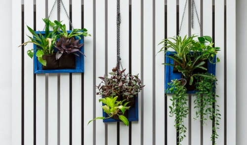 Top 10 Small Space Gardening Solutions