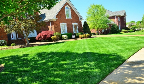 Spring Lawn Care Tips for the Northeast