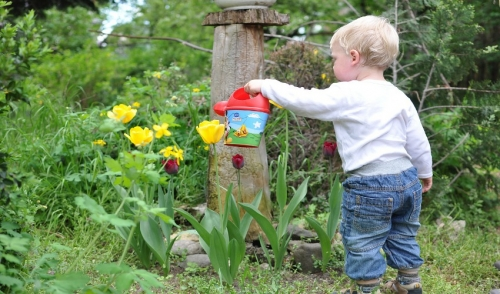 Garden Ideas to Keep Kids Busy | Rail City Garden