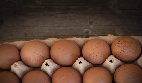 Difference Between Store Bought Eggs and Fresh Farm Eggs