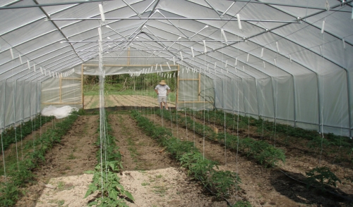 Gardening With Hoop Houses | Knisley's Pet & Farm Center