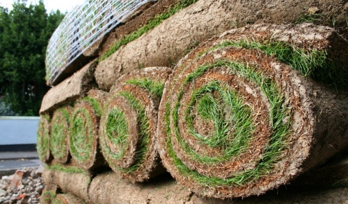 Eight Steps to Properly Laying Sod