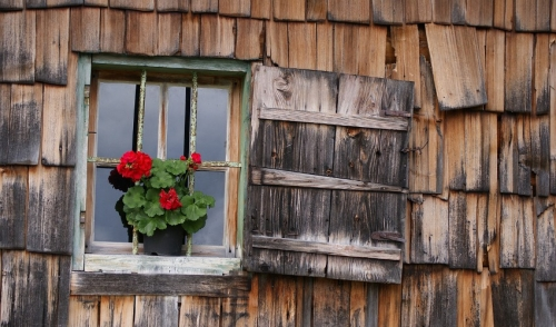 How to Repair Your Wood Siding