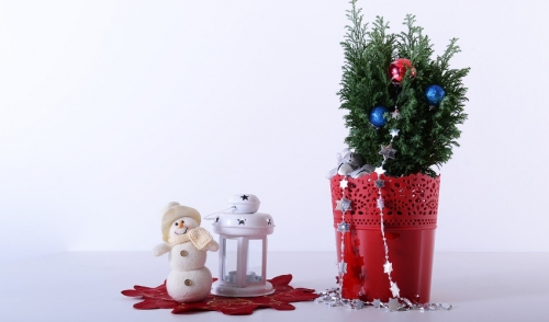 How to Make a Holiday Porch Pot