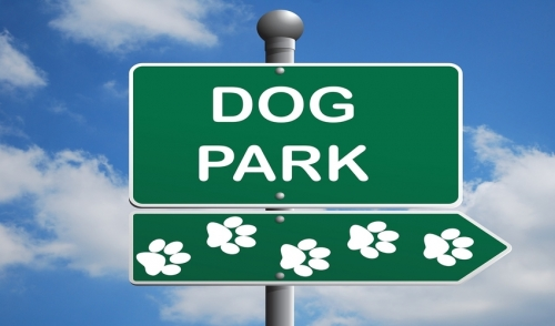 Do's and Don'ts For Dog Parks