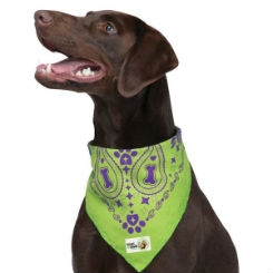 Insect Shield Repellant Bandana