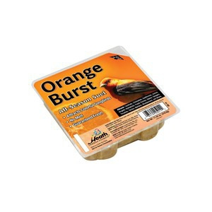 Orange Burst Suet Cake - 11.25 oz