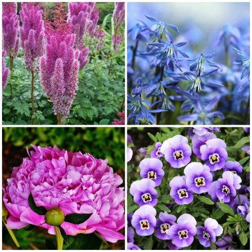 Top 5 Reasons Fall is for Planting Perennials