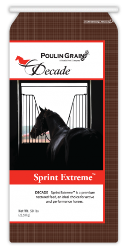 Decade Sprint Extreme Horse Feed