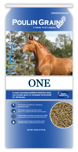 Poulin Grain E-Tec One Horse Feed