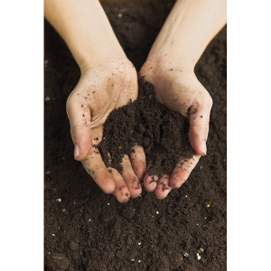 Top Soil- 10 Bags for $16.50