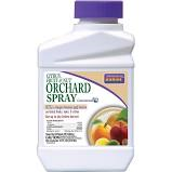 Bonide Citrus, Fruit & Nut Orchard Spray Concentrate