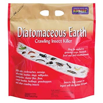 Bonide Diatomaceous Earth Crawling Insect Killer
