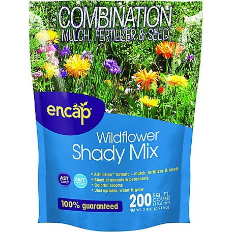 Encap Wildflower Shady Mix