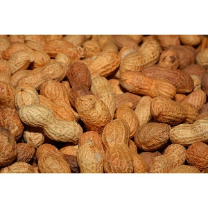 Whole In-Shell Peanuts $1.70 a pound