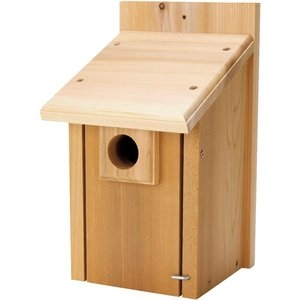 Select Cedar Bluebird House