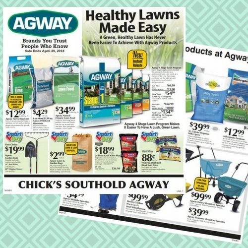 Healthy Lawn Savings