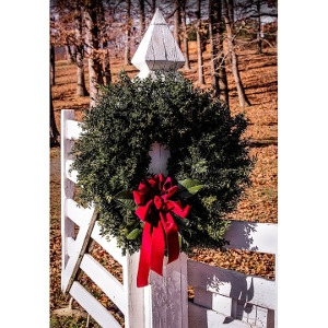 $3 Off Any Christmas Wreath