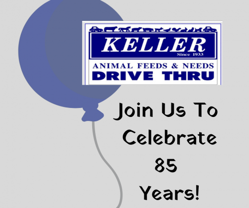 Celebrate 85 Years With Us!