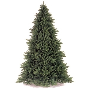 $10 Off Any Premium Christmas Tree