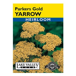 Lake Valley Seed Parkers Gold Yarrow Seed
