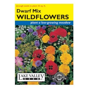 Lake Valley Seed Dwarf Mix Wildflower Seeds