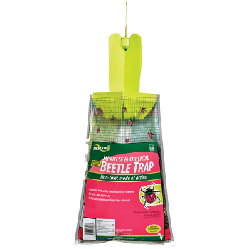 Japanese & Oriental Beetle Trap