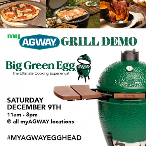 Big Green Egg Demo