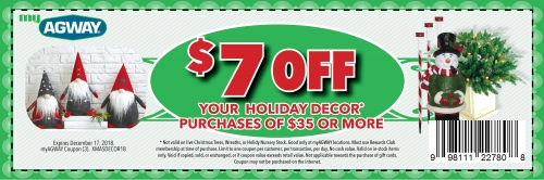 $7 Off your $35 Holiday Decor Purchase