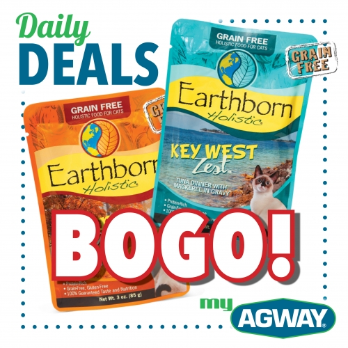 BOGO! Earthborn Holistic 3oz cat food  pouches