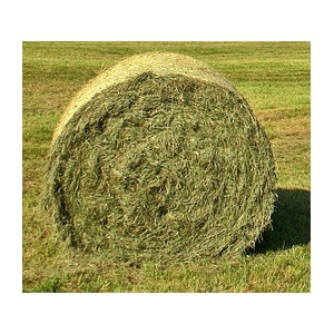 Professional Grass Hay Bale