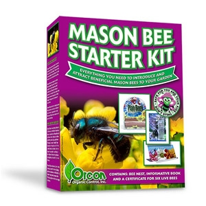 Orcon Mason Bee Starter Kit