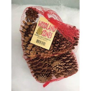 Woodland Cones - Assorted Pack