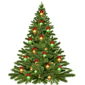 $5 Off Any Cut Christmas Tree