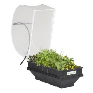 Vegepod Small Raised Garden Bed with Garden Cover