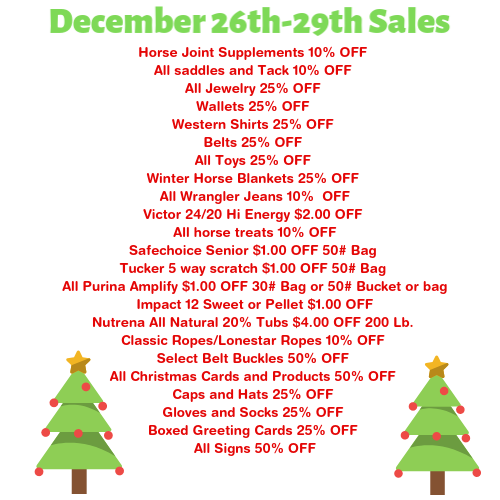 Holiday Sale: 12/26-12/29