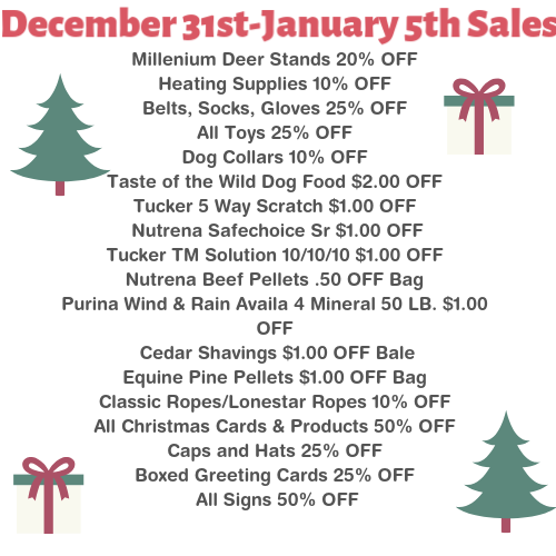 Holiday Sale: 12/31-1/5