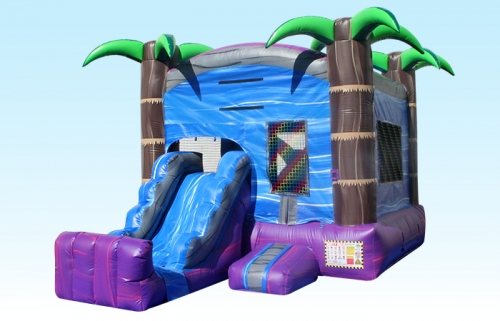 Tropical Combo Bounce House