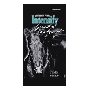 Intensify® Growth & Development Pelleted Horse Feed