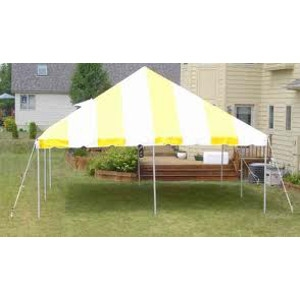 20x20 Traditional Party Canopy Tent