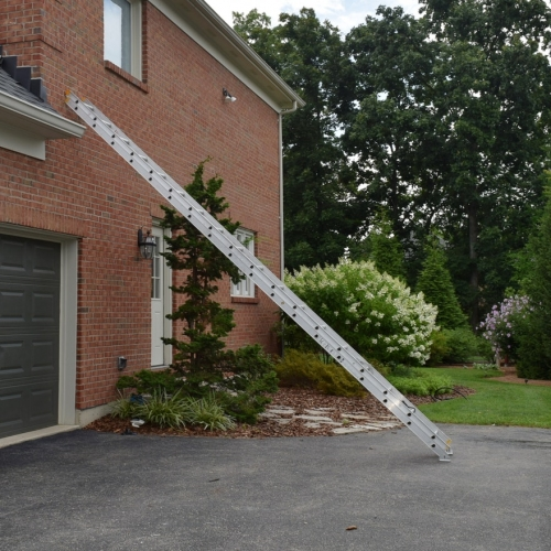 36' Extension Ladder