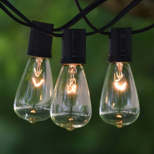 Edison Light String 50'