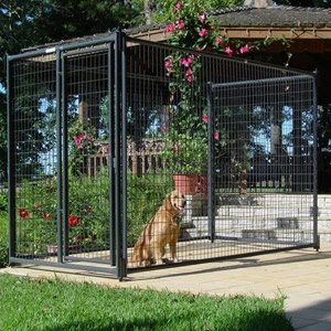Priefert® Dog Kennel