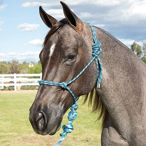 Professional Choice® Rope Halter