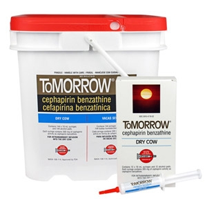 ToMORROW® Dry Cow Mastitis Treatment