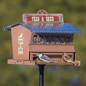 Heritage Farms Absolute® Squirrel Proof Feed & Seed Bird Feeder