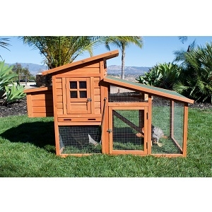 Rugged Ranch Adobe Chicken Coop