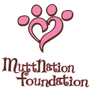 Petmate® MuttNation™ Dog Toys, Collars, and Leashes