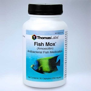 Thomas Labs® Fish Mox® Antibacterial Fish Medication
