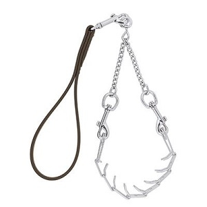 Leather Prong Goat Collar & Brhma Lead